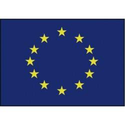 Raad van europa vlag (blauw met gele sterren)